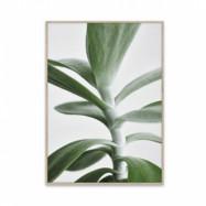 Green Home 04, 50 x 70 cm